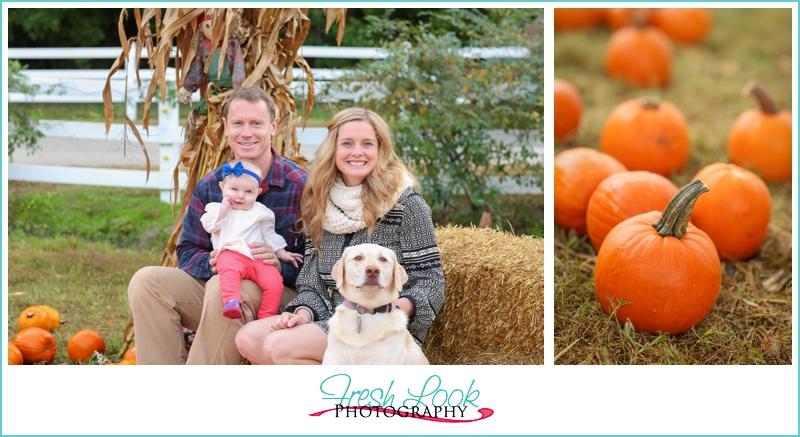 family photo in the pumpkins