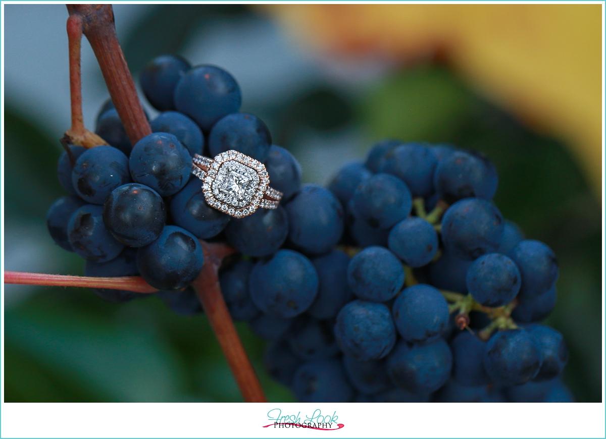 engagement shoot at vineyard