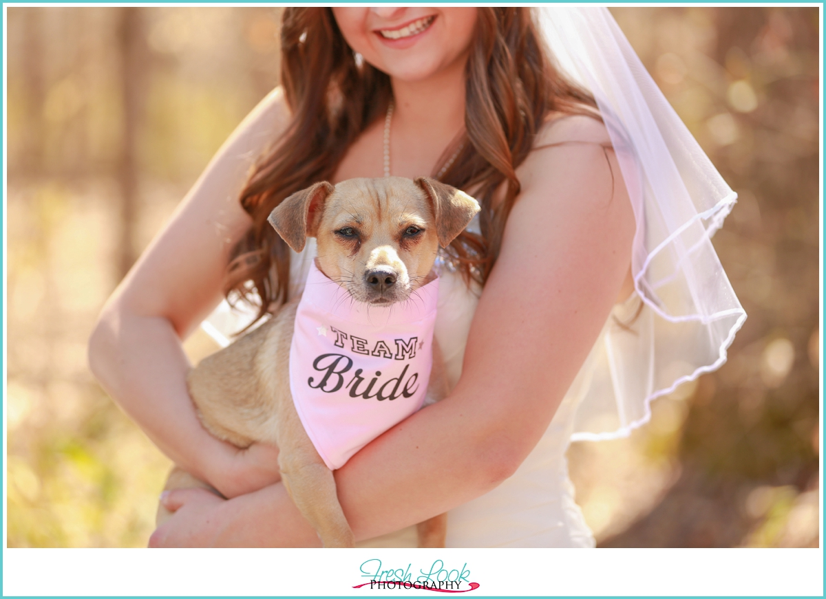 bridal portraits with puppy