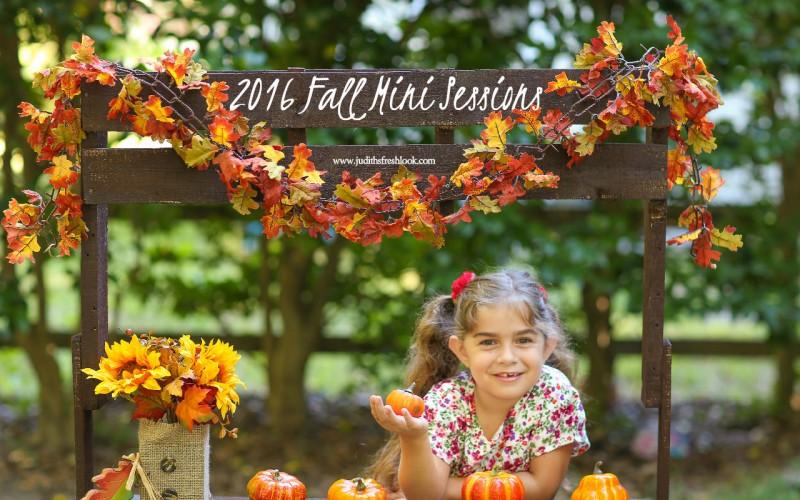 2016 fall mini sessions
