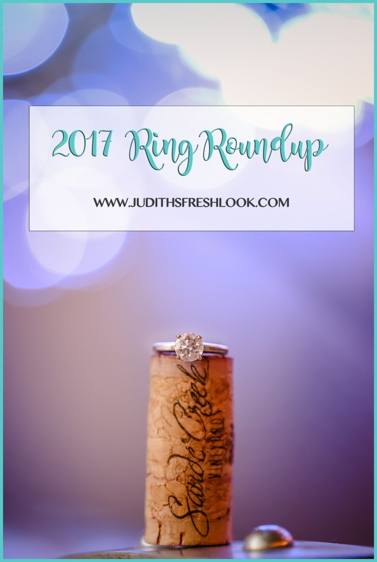 2017 Ring Roundup | Virginia Wedding Photographer