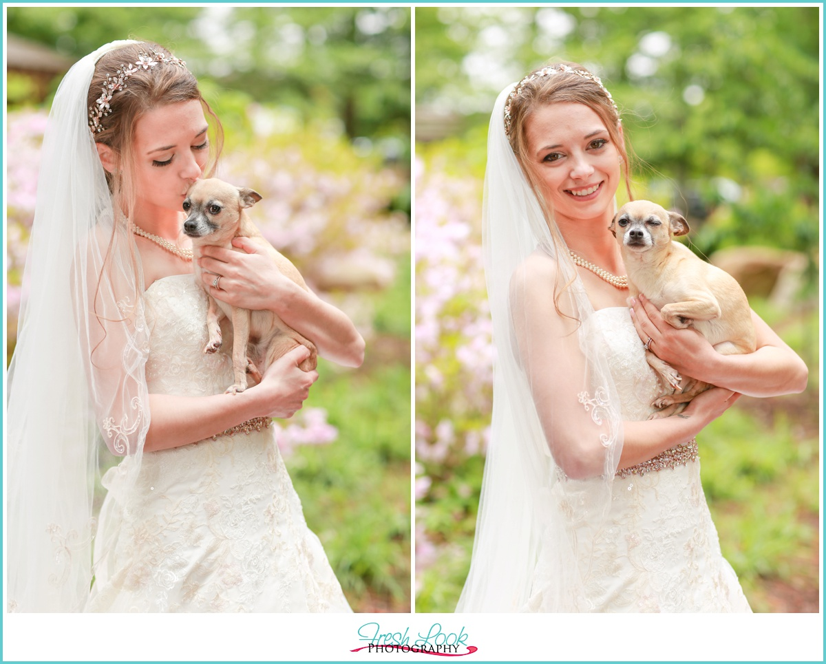 bridal portraits with the puppy