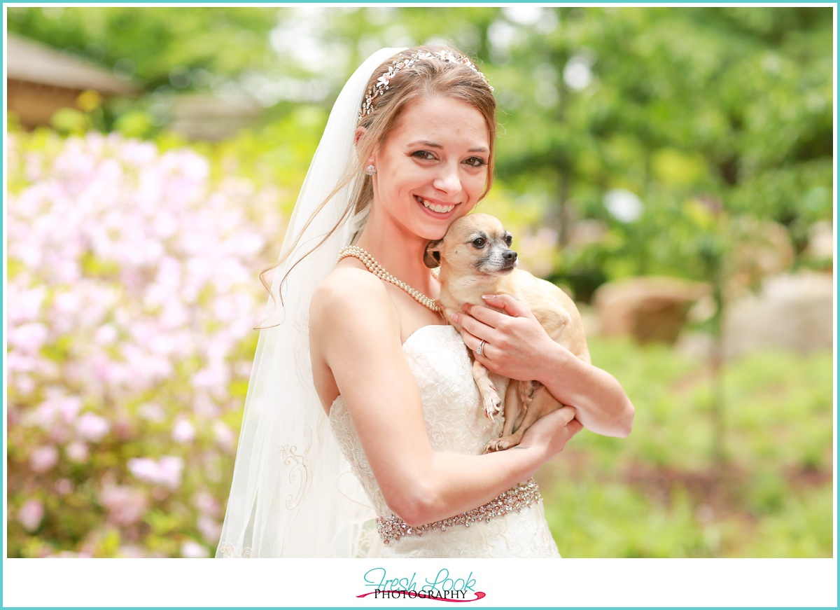 wedding pictures with the dog