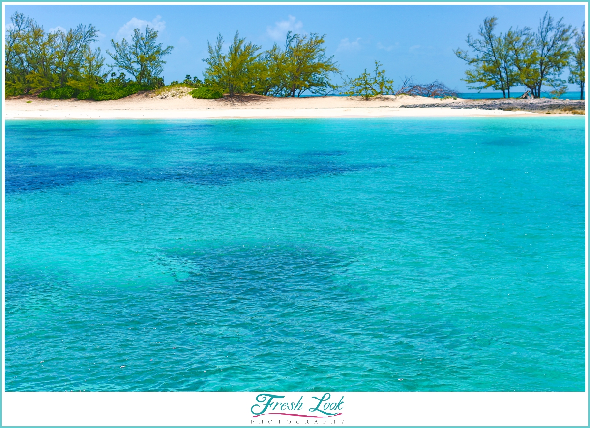 crystal clear waters for snorkeling