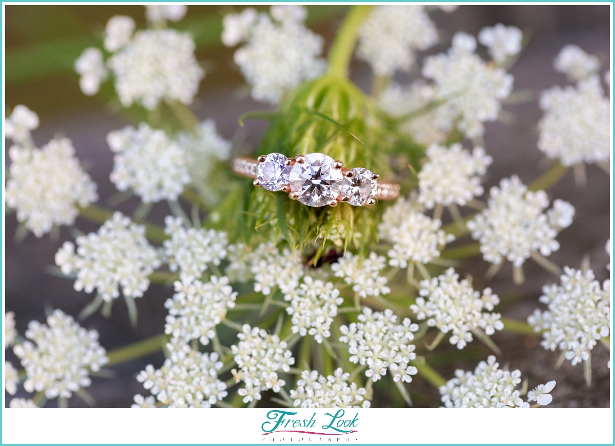 Queen Anne's lace engagement ring