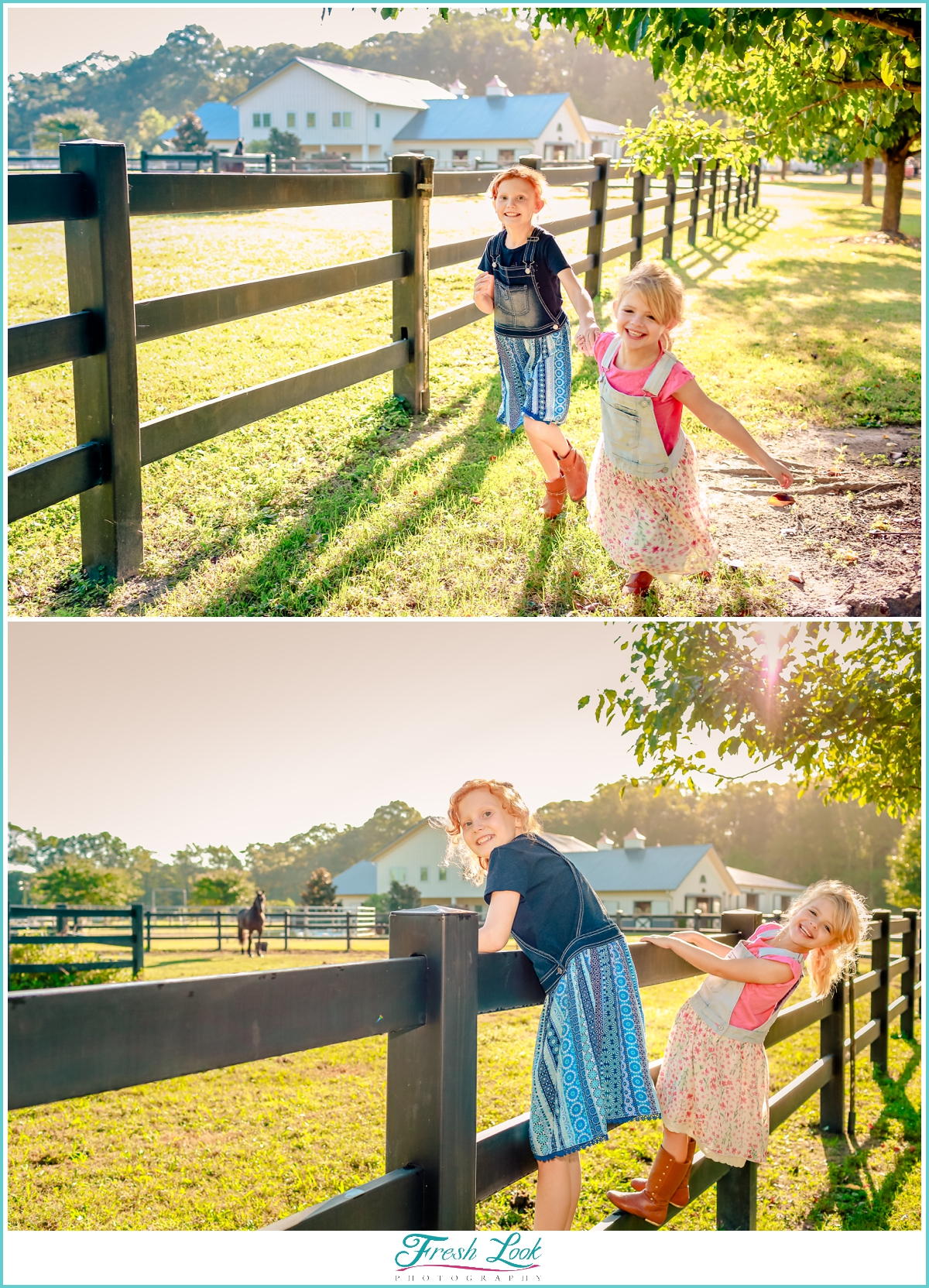 playing on the farm