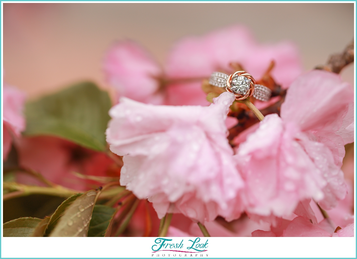 cherry blossom engagement ring shot