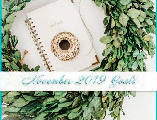 November 2019 Goals | Personal + Professional