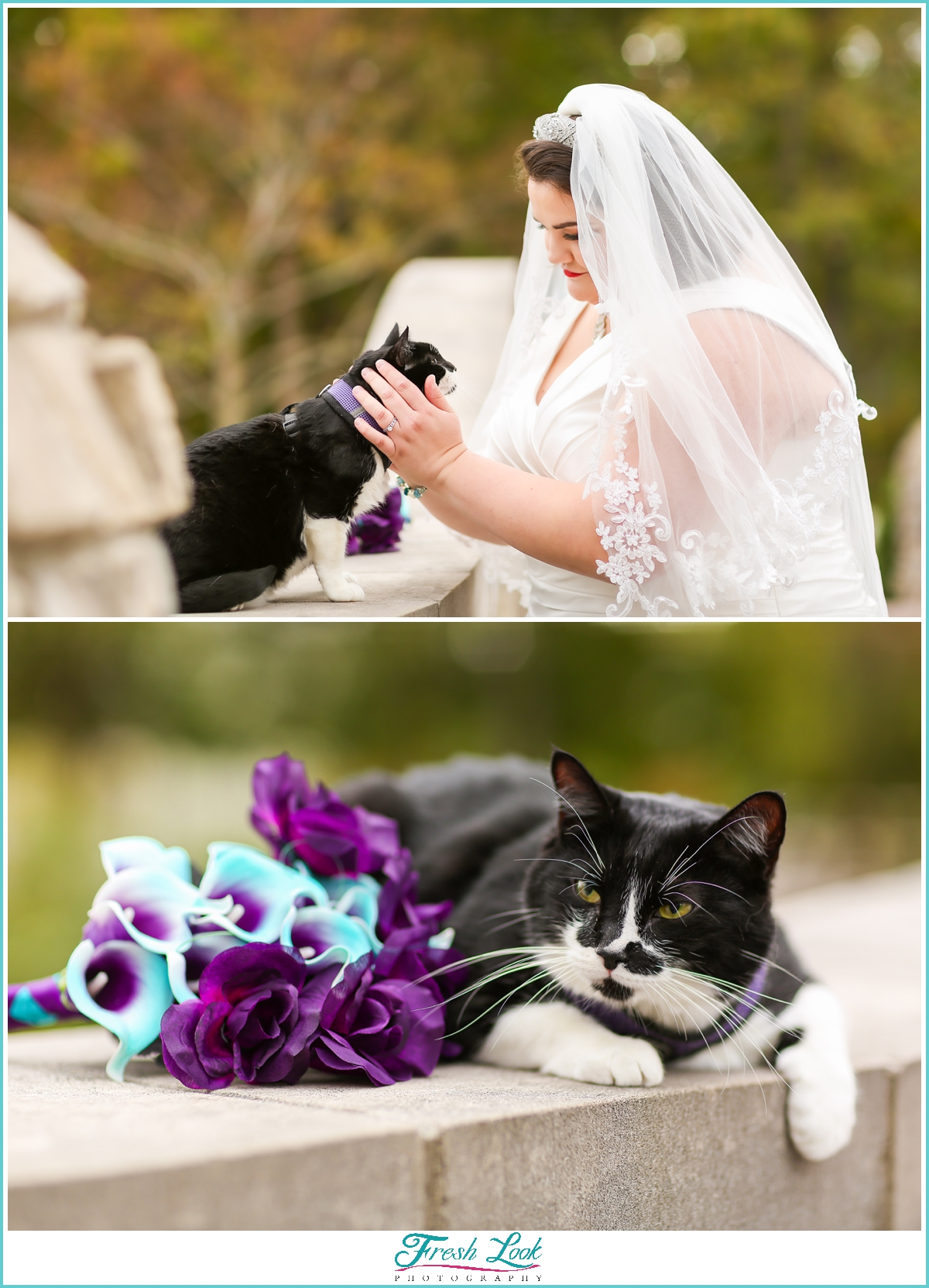 bride and her cat photoshoot
