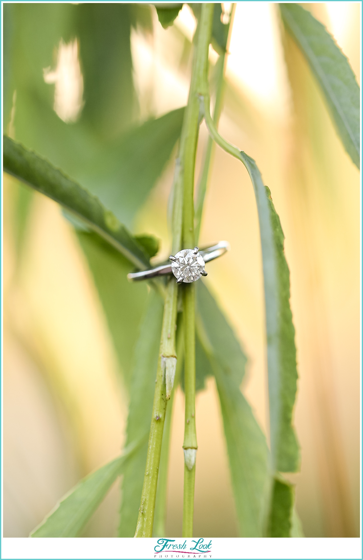 diamond engagement ring photos