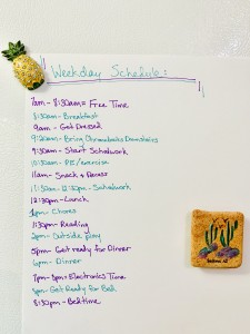 Weekday Schedule for Working at Home with Kids