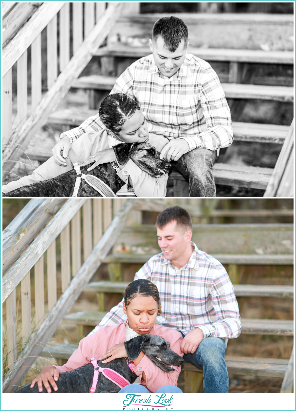 engagement photos with the dog