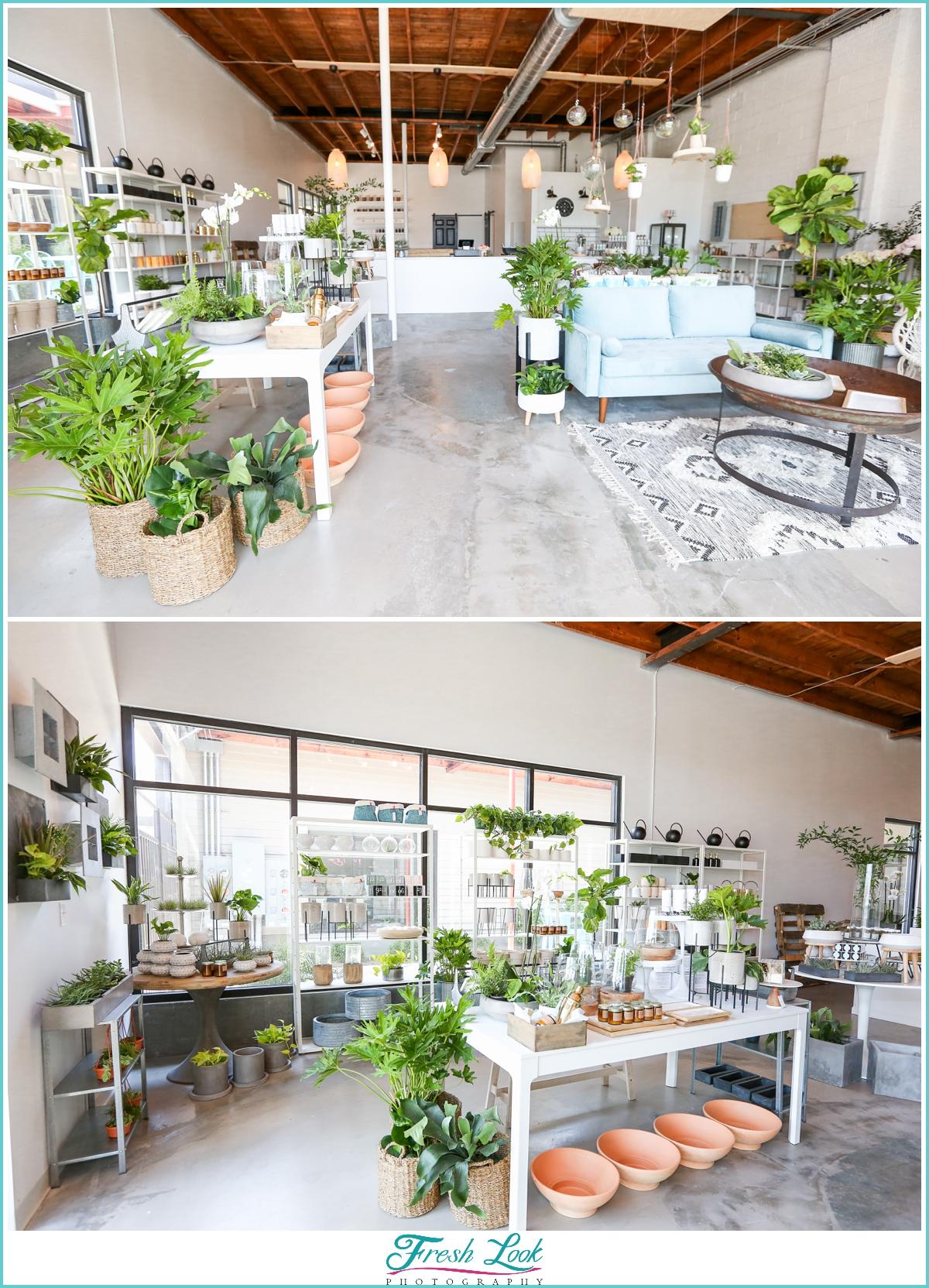 Norfolk Plant Bar Store