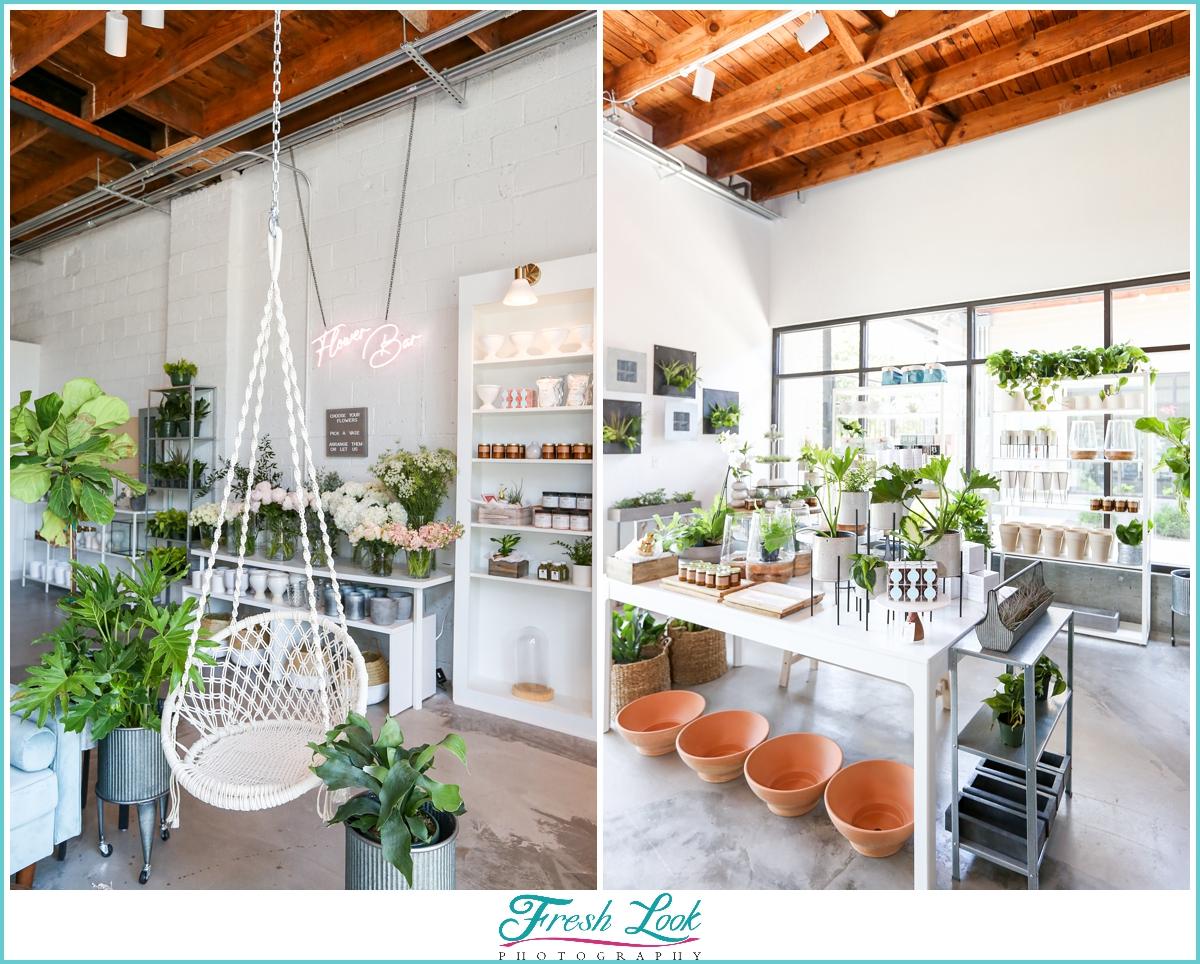 Plant Bar for houseplants