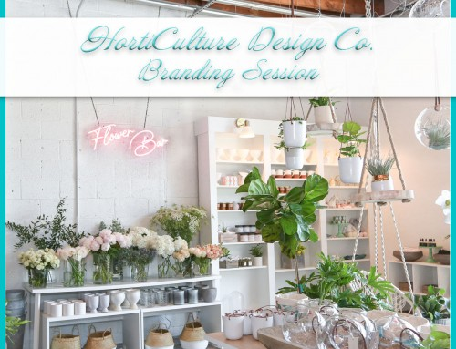 Norfolk Plant Nursery | HortiCulture Design Co.