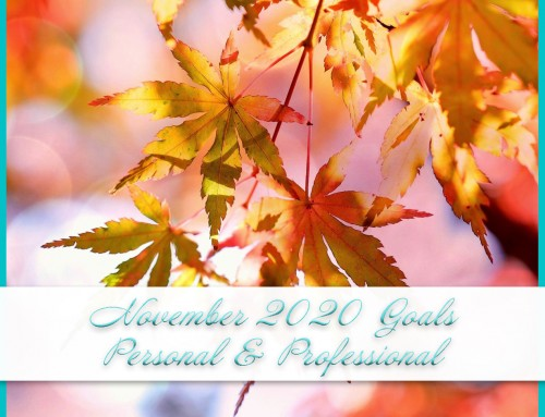 November 2020 Goals | Personal+Professional