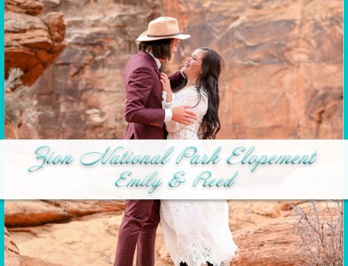 Zion National Park Elopement | Emily+Reed