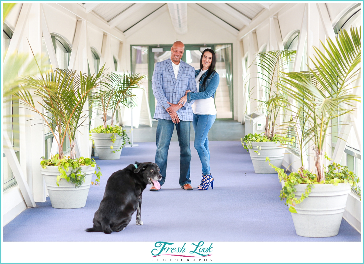 Including dogs in proposal photoshoot